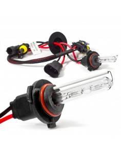 Bec xenon H10 35W - 55W